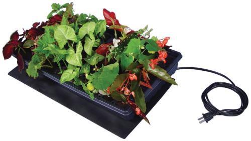 Tapis chauffant pour favoriser la germination un monde - Tapis chauffant pour plante ...